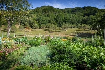 Farm stay Slovenia summer holidays
